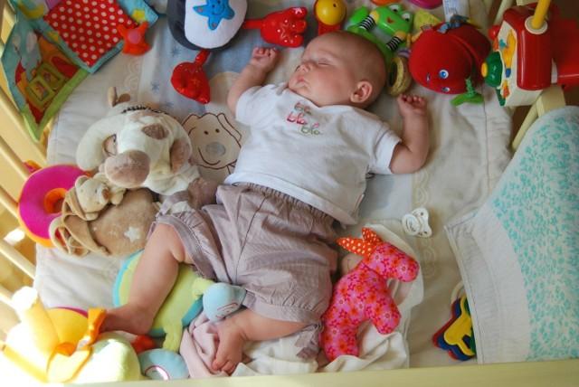 Z ustaleń naukowców wynika, że szkodliwe dla dzieci chemikalia zawiera co czwarta zabawka dostępna na rynku.