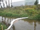 Brudne ścieki płyną do rzek w Częstochowie. Kto zawinił?