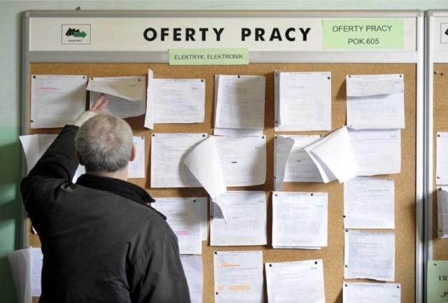 Zdjęcie ilustracyjne/40 ofert pracy czeka na mieszkańców powiatu brodnickiego. Można się z nimi zapoznać w Powiatowym Urzędzie Pracy w Brodnicy