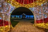 Muszyna stroi się na święta. Wyjątkowe iluminacje bożonarodzeniowe ozdobiły uzdrowisko [ZDJĘCIA]