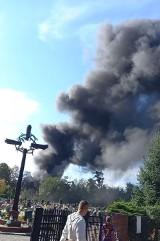 Bytom: Pożar w Stolarzowicach. Ogień ogarnął samochody ciężarowe na parkingu. Kłęby czarnego dymu widać nawet w okolicznych miastach