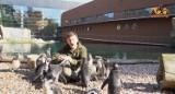 """TEN FILM TO HIT! Pingwiny z wrocławskiego zoo są lepsze niż """"Pingwiny z Madagaskaru"""". Ałaaaa"""