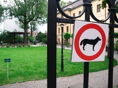 Obok zakazu wprowadzania psów i deptania trawnika w Parku Pokoju nie pojawi się nowa tabliczka zakazująca palenia. Fot. WOJCIECH TRZCIONKA