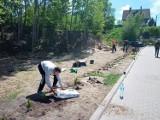 Mieszkańcy ulicy Brzozowej porządkują miejski teren