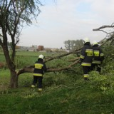 Wichury w powiecie kościańskim. Akcja strażaków w Głuchowie [Foto]