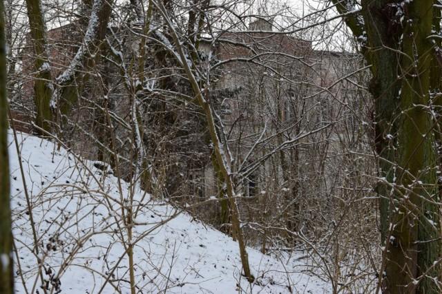 Palczyn. To specyficzna nieruchomość. Zabytkowa część dworu z początku XX wieku połączona jest bowiem z dużo nowszym budynkiem, w którym jeszcze kilka lat temu tętniło szkolne życie. W dworku od 2000 roku nikt już nie mieszka. W parku jeszcze kilka lat temu było 37 zabytków przyrody. Słynna nawałnica, która przeszła przez Polskę w sierpniu 2017 roku, poważnie zniszczyła również i te cenne przyrodniczo drzewa.
