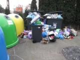 Poznań tonie w śmieciach! GOAP zapewnia: FB Serwis i Remondis będą pracować więcej i dłużej