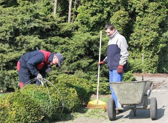 Przygotowania do rozpoczęcia sezonu w ogrodzie botanicznym ruszyły pełną parą