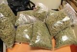 Akcja CBŚ w Jabłonnej: Znaleziono 4,5 kg marihuany