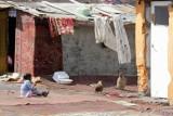 """""""Romowie wcale nie są biedni. Umieją udawać i kraść"""" (LIST)"""