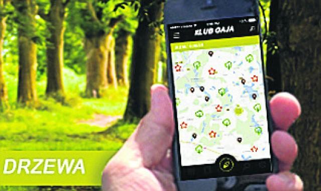"""Aplikacja """"Drzewa z klimatem"""" smakuje naturą i letnią przygodą"""