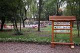 Zielone inwestycje w Katowicach. To dobry pomysł!