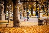 Pogoda w Łodzi i regionie na wtorek 17 października
