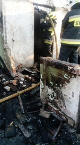 Pożar w Katowicach. W spalonej altance znaleziono zwłoki mężczyzny