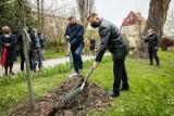 Ogród Botaniczny UKW w Bydgoszczy zostanie zrewitalizowany. Są już na to pieniądze