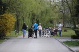 Sosnowiec: Pijani opiekowali się dzieckiem w Parku Sieleckim