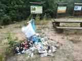 Góra śmieci w naszym lesie