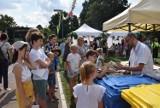 O klimacie, środowisku podczas Festynu Klimatycznego w Pruszczu. Zobaczcie jak było! ZDJĘCIA