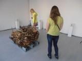 Arthropocene wystawa grupy Daed Baitz w BWA [ZDJĘCIA]