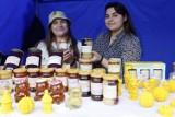 Święto pszczół w Ogrodzie Botanicznym UMCS w Lublinie. Zobacz zdjęcia