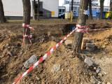Kraków. Mieszkańcy nie chcą drogi pod oknami. Oskarżają dewelopera o niszczenie drzew. Interweniowała policja