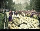 Redyk owiec dawniej. Zobacz stare, kolorowe zdjęcia baców i juhasów