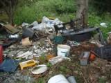 Pleszew. Lasy toną w śmieciach. Jest coraz gorzej!