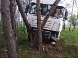 Wypadek z udziałem dwóch ciężarówek na DK 10 pod Solcem Kujawskim [zdjęcia]
