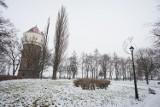 Zimowy czas w Inowrocławiu [zdjęcia]