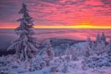 Dzień Krajobrazu. Oleśniczanie pokazali najpiękniejsze zdjęcia z Oleśnicy i okolic