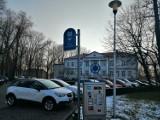 Płatne parkowanie w Wieluniu po nowemu. Dobra zmiana? SONDA