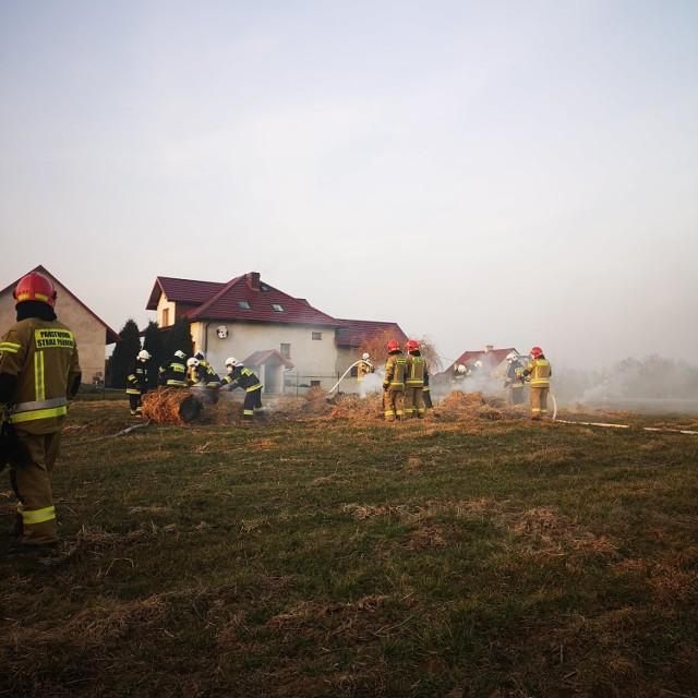 Pożar gasiło siedem jednostek straży pożarnej, w tym OSP Gogołowa