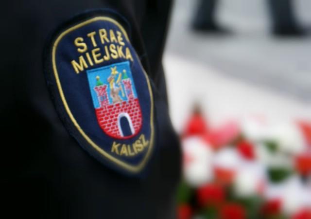 Straż miejska w Kaliszu kontroluje zgromadzenia młodzieży i szuka wolontariuszy do pomocy seniorom
