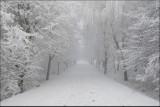 Wspomnienie mijającej zimy