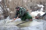 Zator lodowy na Skorze pod Chojnowem, pomogli saperzy