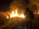 Bydgoszcz. Sprawca podpaleń ze Szwederowa, 55-latek, usłyszał zarzuty. Straty oszacowano na 5 tys. zł