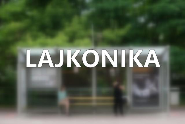 Lajkonik też ma swój przystanek w Krakowie! Znajduje się on w Zwierzyńcu