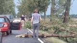 Wrocław. Są ranni po burzach, które szalały w sobotę po południu (SZCZEGÓŁY)