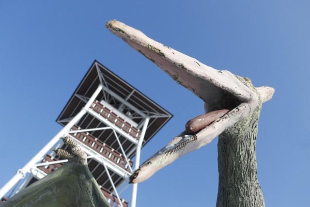 Atrakcją Głobikowej koło Dębicy jest wieża widokowa oraz 6 dinozaurów.