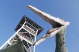 Takie atrakcje mamy w Głobikowej niedaleko Dębicy. Park dinozaurów i wieża widokowa [ZDJĘCIA]