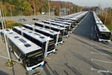 55 nowych autobusów na ulicach Gdyni. Zastąpią starsze pojazdy. To największa wymiana taboru w historii gdyńskiej komunikacji miejskiej
