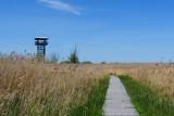 Stawy Przemkowskie z wieżą widokową na Dolnym Śląsku. Idealne miejsce na szybką wycieczkę na weekend! [JAK DOJECHAĆ, ZDJĘCIA]