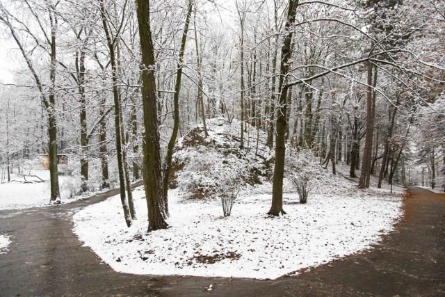 Park Bednarskiego i okolice w zimowej odsłonie