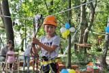 Park linowy nad Jeziorem Tarnobrzeskim już otwarty! Atrakcja dla małych i dużych [ZDJĘCIA]