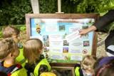 Ponad 40 placówek przyrodniczych z całej Polski  świętowało Wielki Dzień Pszczół