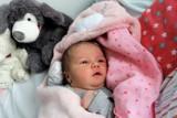 Noworodki z Pucka. Maluszki, które przyszły na świat w lutym 2019 [galeria zdjęć]