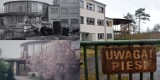 Ośrodek Wypoczynkowy ZNTK i rotunda w Skokach. Gościły tu tłumy. Jak dziś wygląda to popularne miejsce?
