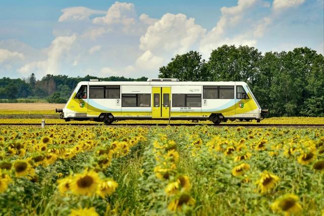 """Ostatnia wycieczka tegorocznego cyklu """"Poczuj przygodę odkrywając lubuskie pociągami POLREGIO"""""""