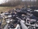 Dzikie wysypisko odpadów motoryzacyjnych za Palmiarnią w Wałbrzychu. Morze plastiku szpeci piękne okolice Lubiechowa