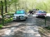Leśnicy apelują, by nie zostawiać samochodów na drogach leśnych